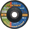 Круг лепестковый шлифовальный ПРАКТИКА 125 х 22 мм Р 80 (1шт.) серия Профи