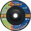 Круг лепестковый шлифовальный ПРАКТИКА 180 х 22 мм Р60 (1шт.) серия Профи